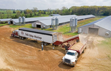 Oak Ridge Shavings delivers fresh bedding to a poultry farm in Barry County, Missouri. One 53-foot-long semitrailer holds enough bedding to cover the floor of a 40-by-400-foot barn. Photo by Jason Jenkins.
